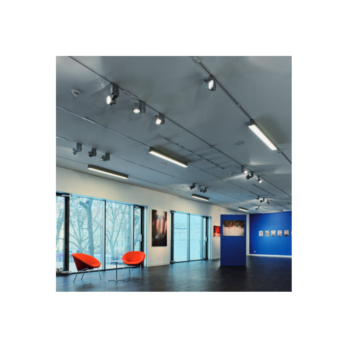 29 9 m eutrac 3 phasen stromschiene 230v strom schiene alu profil phase ebay. Black Bedroom Furniture Sets. Home Design Ideas